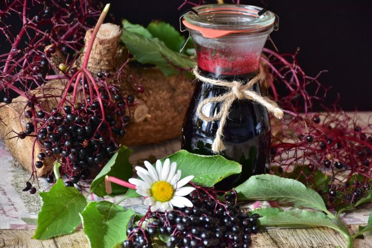 Here's How to Make Your Own Elderberry Syrup